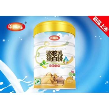 骆驼乳蛋白粉金装营养粉1000克