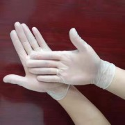 一次性防护手套(500双/件起发)