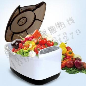 锐智果蔬宝 全自动活氧机消毒清洗机RZ-06A